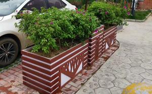 幸福樹組合pvc花箱